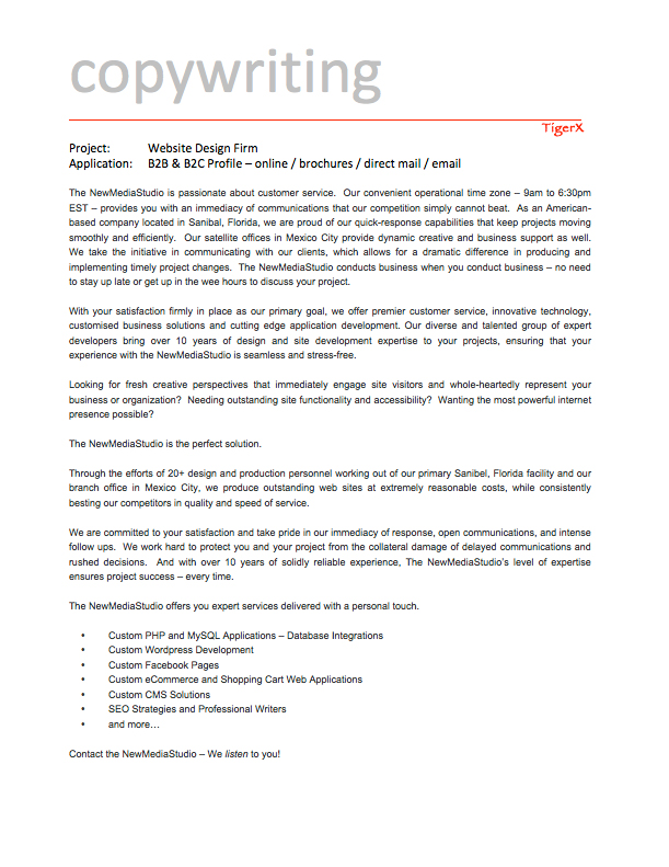 B2B Marketing Material 7